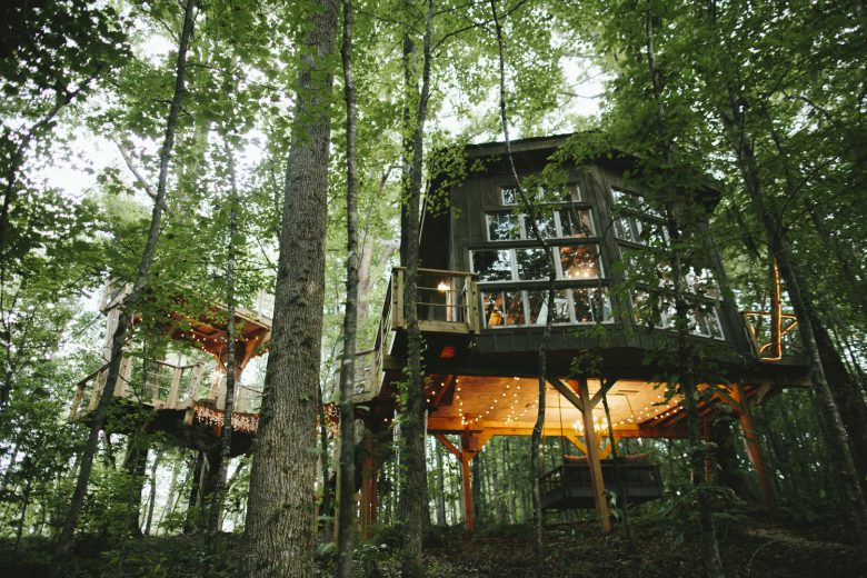 Amazing Treehouses You'll Want to Move Into